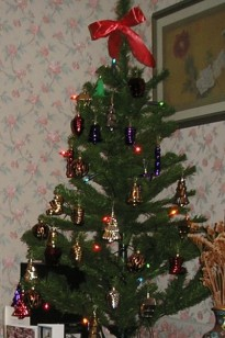 Our tree, Christmas 2010 (and 2011 and 2012, and probably many years to come)